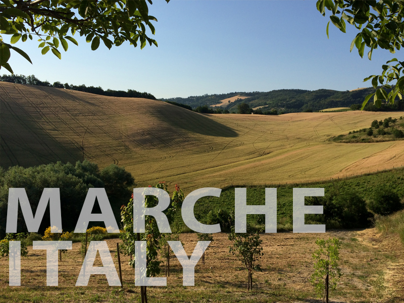 Marche/Italy